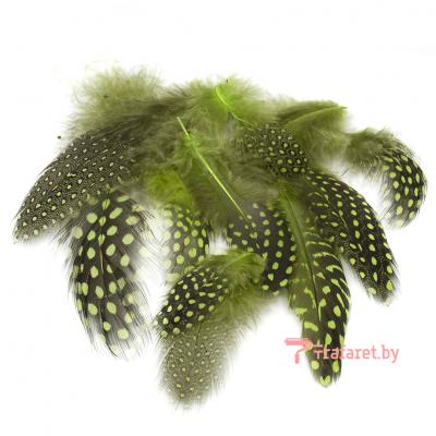 Перья пятнистые зеленые, 20 шт